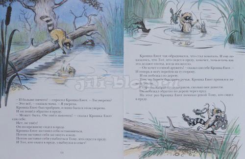 Крошка енот и тот, кто сидит в пруду фото страниц