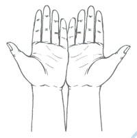 Пальчиковая фигура Раскрытая книга