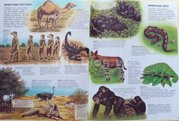 Атлас животных Фото страниц