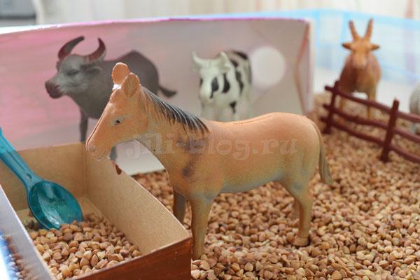 Сенсорная коробка Домашние животные
