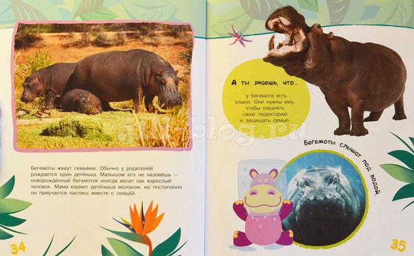 Энциклопедия животных для малышей Фото разворота