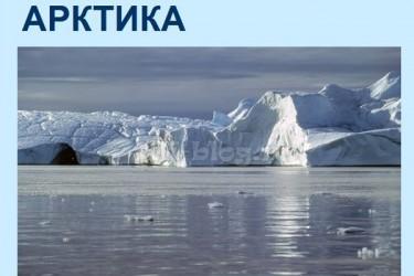 Презентация на тему Арктика