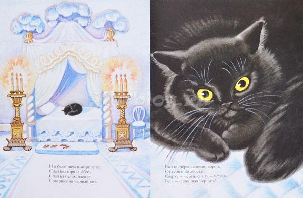 Белый дом и черный кот фото разворота