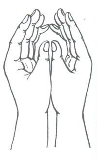 Пальчиковая фигура Бутон