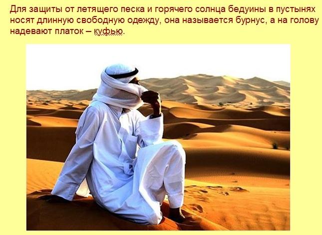 Пример слайда. Презентация Пустыня