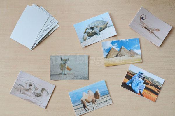 Дидактическая игра с карточками Пустыня