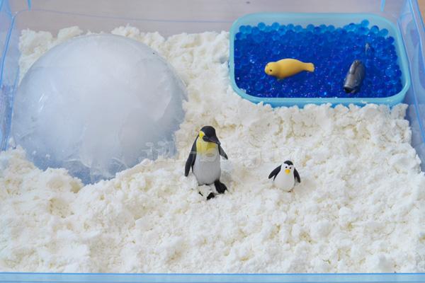 Сенсорная коробка Антарктида