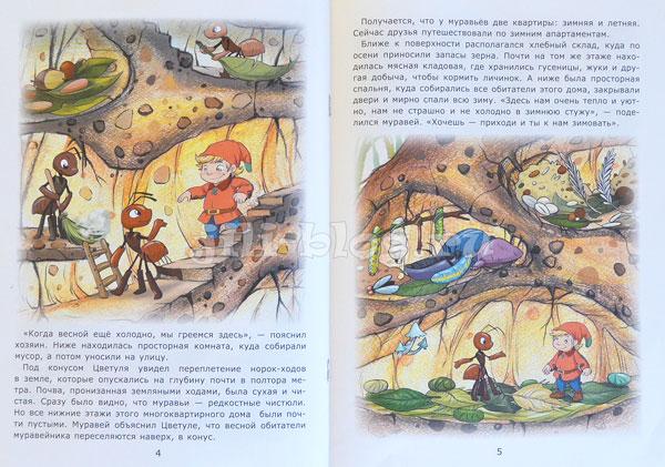 Гномик в муравейнике Фото страниц