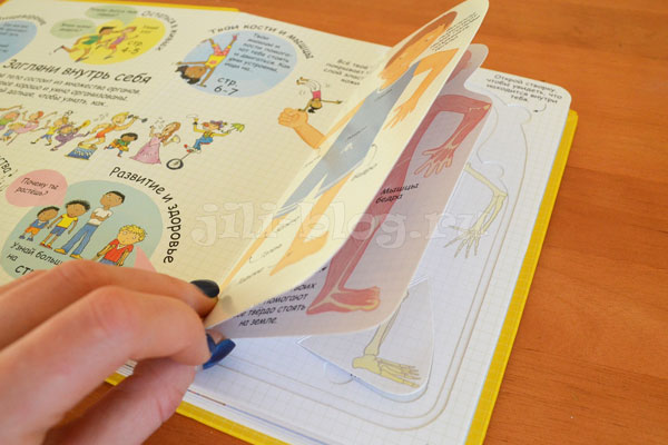 Книга Секреты человека фото внутри