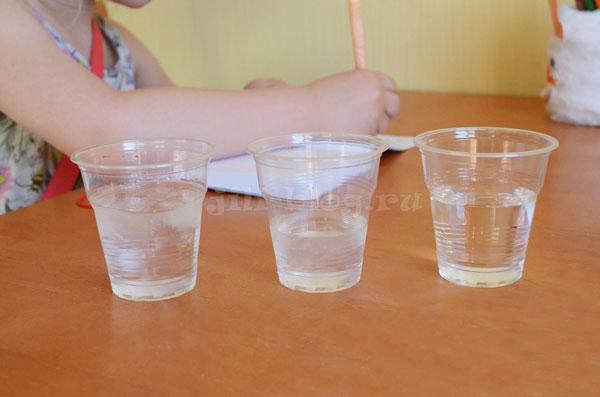 Исследуем различные состояния воды