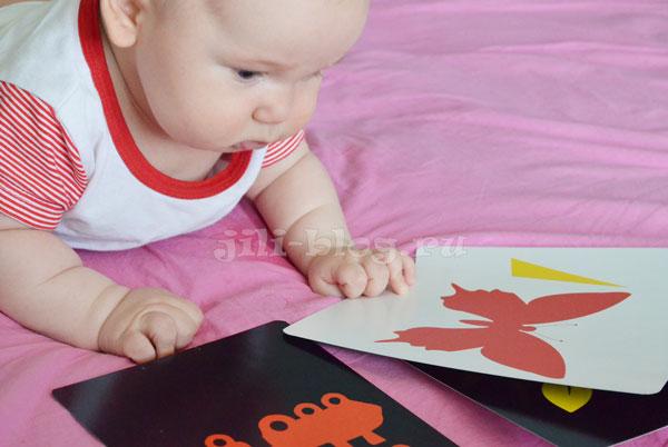 Цветные картинки для младенцев